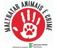 campanha_animais