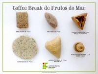 coffee_break_frutos_do_mar