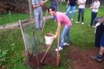 compostagem_01
