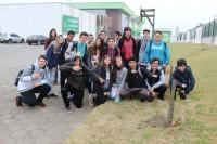 plantio mudas_criciuma3